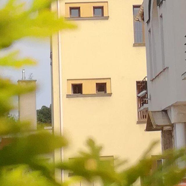 Dzień dobry ☺ Zapowiada się spokojny dzień, a wszystko pod kontrolą czujnej kamery monitorującej. #bispro24 #cctv #monitoring