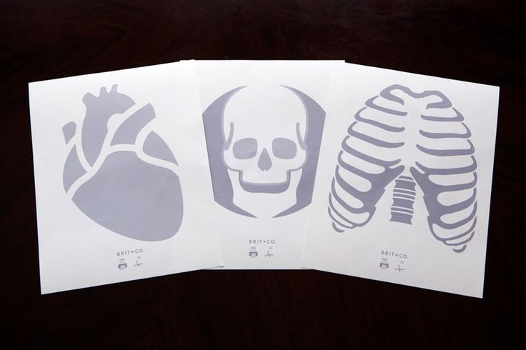 We've been waiting for this moment for a while here at Brit + Co. We all love to get creepier than a Steve Buscemi character in an Adam Sandler movie and finally the holiday that makes it acceptable is so very near. And what could be creepier than human bones and major organs!?