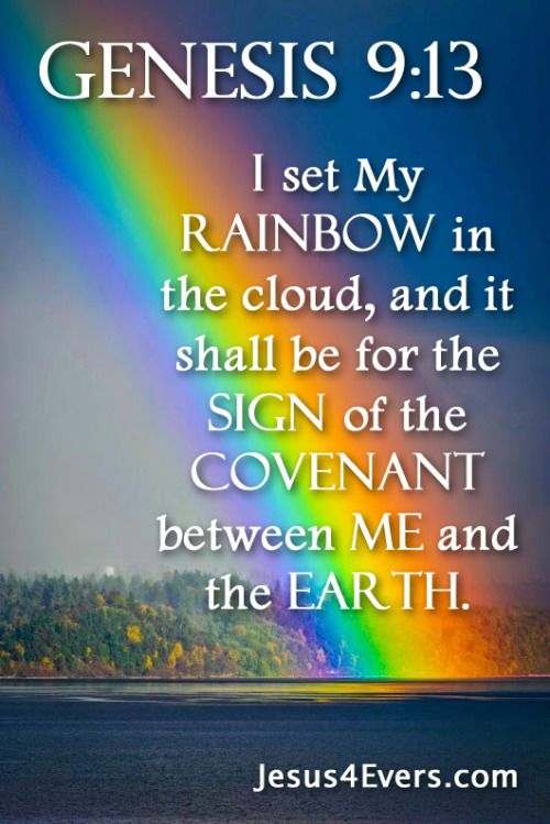 Genesis 9:13 (NKJV) - I set My rainbow in the cloud, and it shall be for the sign of the covenant between Me and the earth.