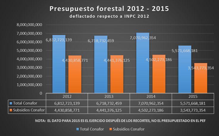 'Uno de los aspectos que más claramente muestra la poca importancia que brinda la administración actual respecto al tema ambiental, y particularmente del sector forestal y al manejo activo de los bosques, es el severo recorte al presupuesto para apoyo al aprovechamiento sustentable de los bosques bajo la responsabilidad de la Comisión Nacional Forestal'.