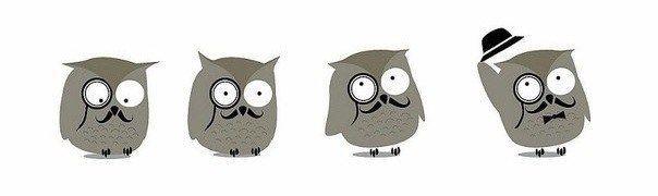 Забавные Совы (подборка, птичья тема) / Рисунки и надписи / ВТОРАЯ УЛИЦА