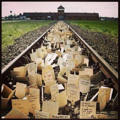 Where Was The Auschwitz Camp Located: 17 Best Images About Historias Del Holocausto On Pinterest