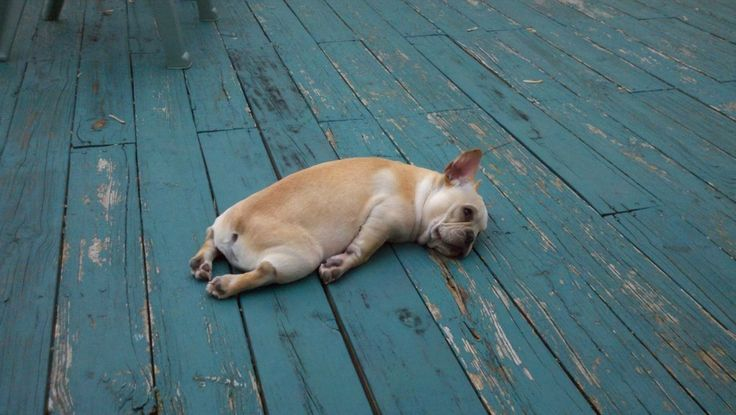 <b>Viver cansado é uma verdadeira batalha.</b>
