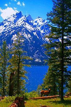 Grand Tetons - Teton Crest Trail Route selection advise - Trailspace.com