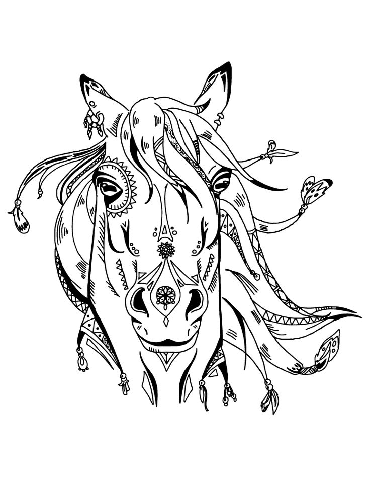 144 best coloriage d 39 animaux animal adult coloring page images on pinterest adult coloring - Dessin d animeaux ...
