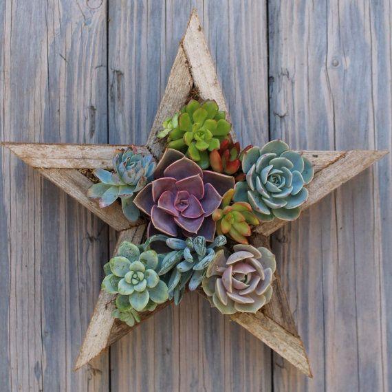 SMALL Star Vertical Succulent Garden by SucculentWonderland