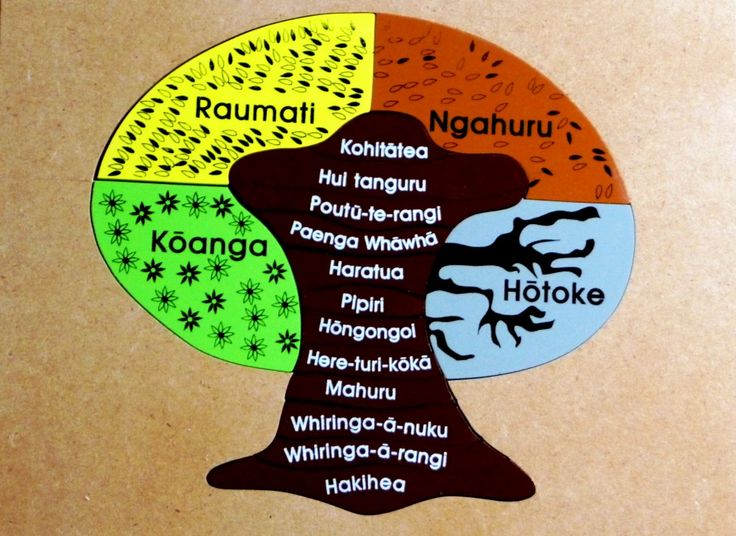 The seasons & months Maori words are incorporated in the puzzle helping children identify understand the concept of FOUR seasons & 12 months in a year