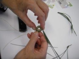 Coil the first group of pine needles into a circle, and wrap it with thread to start the pine needle basket.