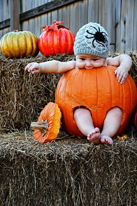 Baby Portrait. Fall. Halloween. Harvest. Clever idea. Adorable. Pose. Pumkin. Super cute. Stuffed. Teething. Haystacks