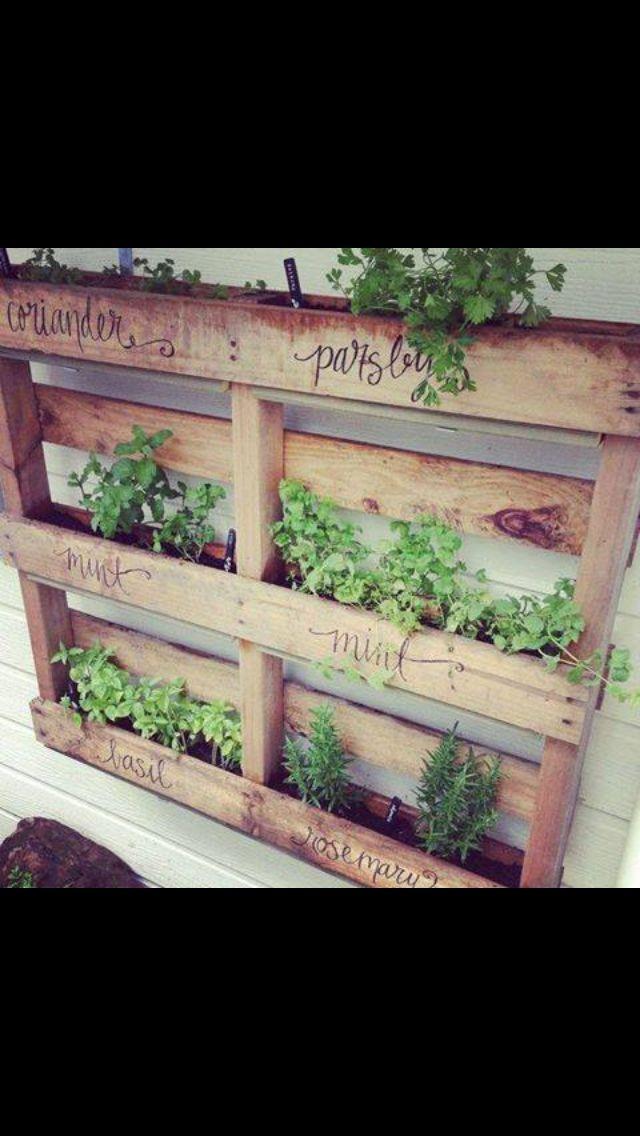 Herb garden pallet