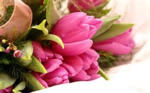send flowers - http://www.indiangiftsportal.com/send-gifts-chennai.html