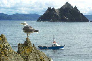 Skellig Island, Kerry