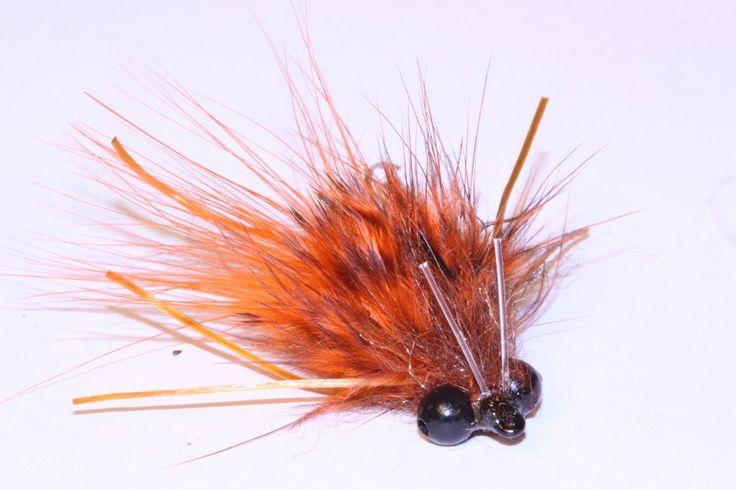carp flies | Carp Fly                                                       …