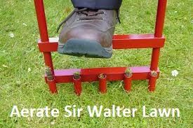 Tips to Aerate Your #SirWalter Lawn by A Leading Turf Farm in #Sydney