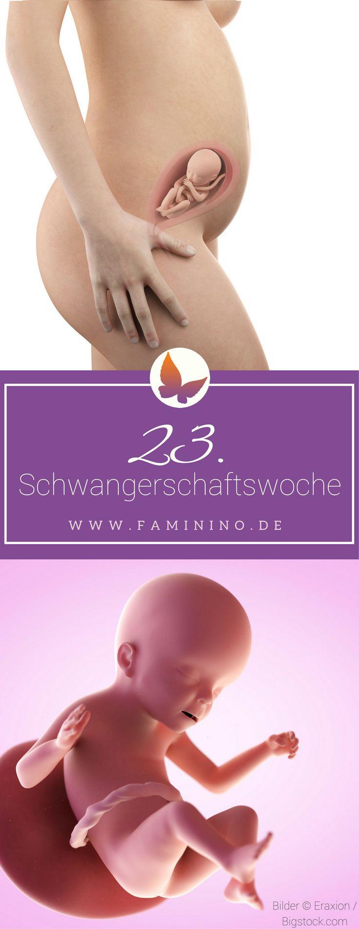 23. SSW (Schwangerschaftswoche): Dein Baby, dein Körper, Beschwerden und mehr