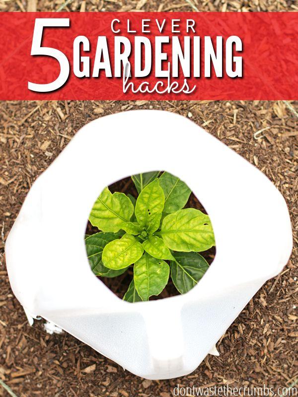 5+Clever+Gardening+Hacks