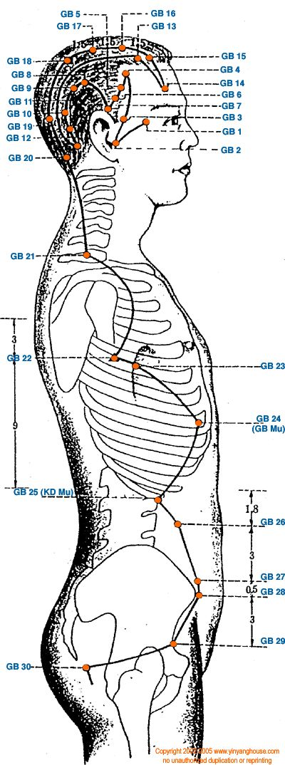 Wonderful picture showing the gallbladder channel in TCM theory from the trunk up!