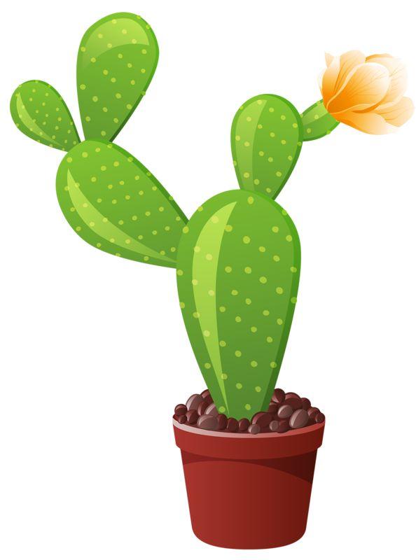 Комнатные цветы картинки для детей