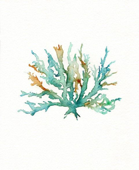 No. 2 Sea Coral  / Teal / Aqua / Yellow Ochre / Watercolor. $20.00, via Etsy.    sooo simple & gorgeous!  white frame & mat