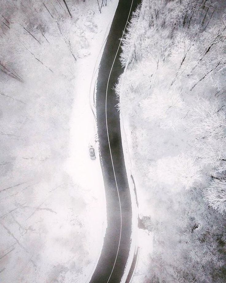 Winter story  by Alexandru Drăgan @alexandrudrg Location  Baia Sprie Maramureș . . . . #transylvania #trees #travel #wildlife #winter #wonderland #landscape #instagood #ig_travel #instamagazine #discover #nature #explore #ig_trees #tree_magic