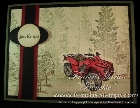 192 best stampin up mens card ideas images on pinterest stampinup need for speed and lovely as a tree boy cardsmens bookmarktalkfo Choice Image