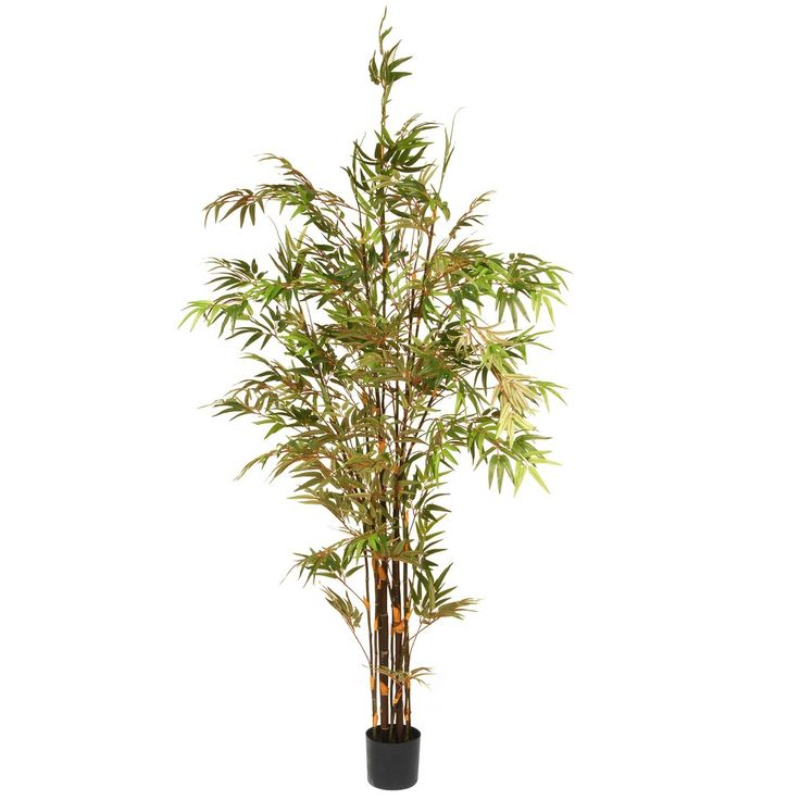 Artificial Potted Japanese Bamboo Tree Green 7 Ft. - National Tree Company