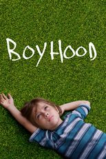✏ Boyhood Movie Storyline  Boyhood Movie : The film tells a story of a divorced couple trying to raise their young son. The story follows the boy for twelve years, from first grade at age 6 through 12th grade at age 17-18, and examines his relationship with his parents as he grows.
