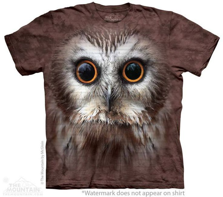 Big Face Saw Whet Owl T-Shirt @ Click image to purchase