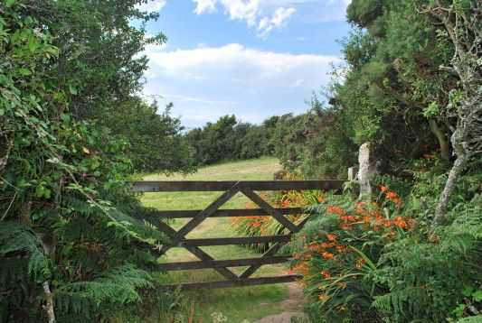 A Tranquil Meadow and Camping Field by the Sea – Tremorna Farm in West Cornwall