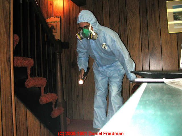 27 best how to remove mold mildew odors from your home images on pinterest remove mold mold. Black Bedroom Furniture Sets. Home Design Ideas