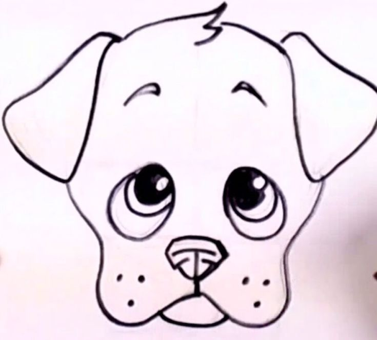 1000+ images ab... Easy Dog Face Drawing