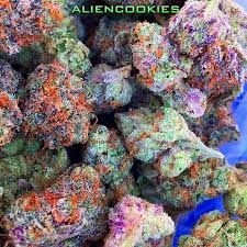 JOINTCANNABISDISPENSARY IS THE NUMBER ONE FAST,FRIENDLY,DISCREET,RELIABLE TOP DISPENSARY.Buy Marijuana Online | Order Weed Online | THC and CBD Oil For Sale. Buy Marijuana Online, Buy Medical Marijuana Online, Order Weed Online, Buy Cannabis Oil Online , THC, CBD Oil, hash,wax,shatter for sale,medical marijuana,cannabis,weed oil,THC,CBD,Concentrate .contact info Go to..https://www.jointcannabisdispensary.com Text or call +1(408)909-1859