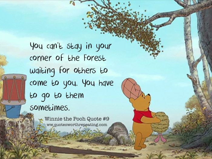 LADIES AND GENTLEMAN I GIVE THE BEAR YOU'VE ALL BEEN WAITING FOR: WINNIE THE POOH!!! *audience applauds*