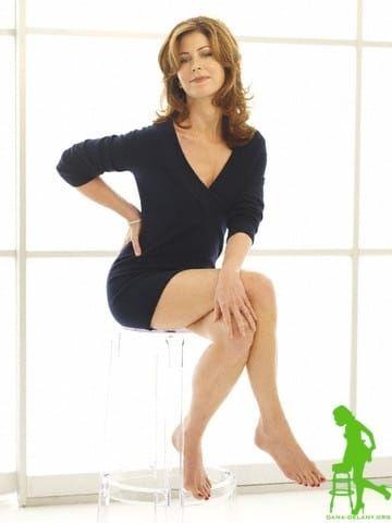 Dana-Delany-Sexy-Celebrity-Legs-Zeman-00020.jpg (360×480)