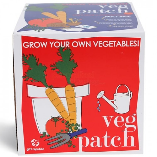 Veg Patch Sow and Grow Kit from Personalised Gifts Shop - ONLY £9.95