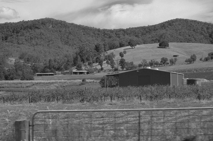 https://flic.kr/p/sCuUKe   IMG_4604 edit copy   Hunter Valley, NSW, Australia. March 2015.