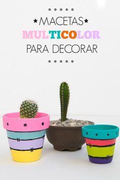 Macetas multicolor para decorar