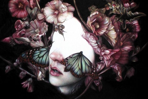 coloured pencil botanical portraits by marco mazzoni
