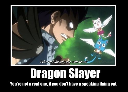 Yes! Everyone needs a flying cat! And so since there plenty of cats here I will check every last one! Oh better not do that. Hmm....ah! I'll go get Kyo!