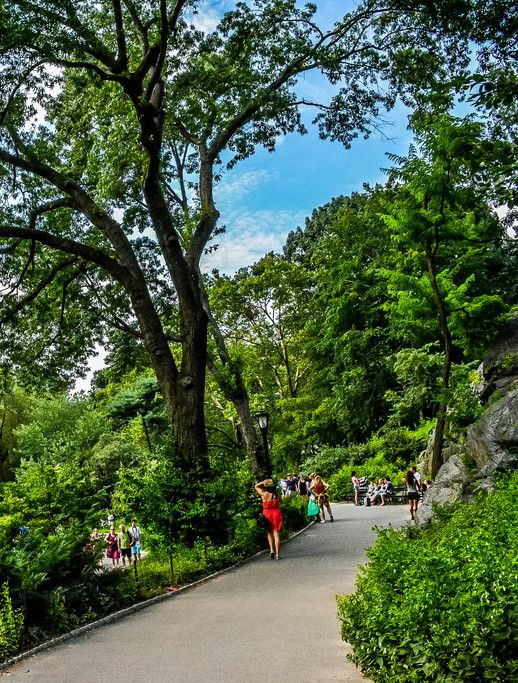 Central Park- Central Park is not your ordinary park. It is a beauty by itself that countless movies, novels and films took place here. hotel41nyc.com