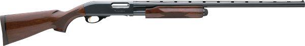 12-gague, pump action remington 850