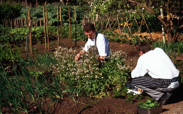 Royal Mail Hotel (Dunkeld) - they grow their own herbs and vegetables on site