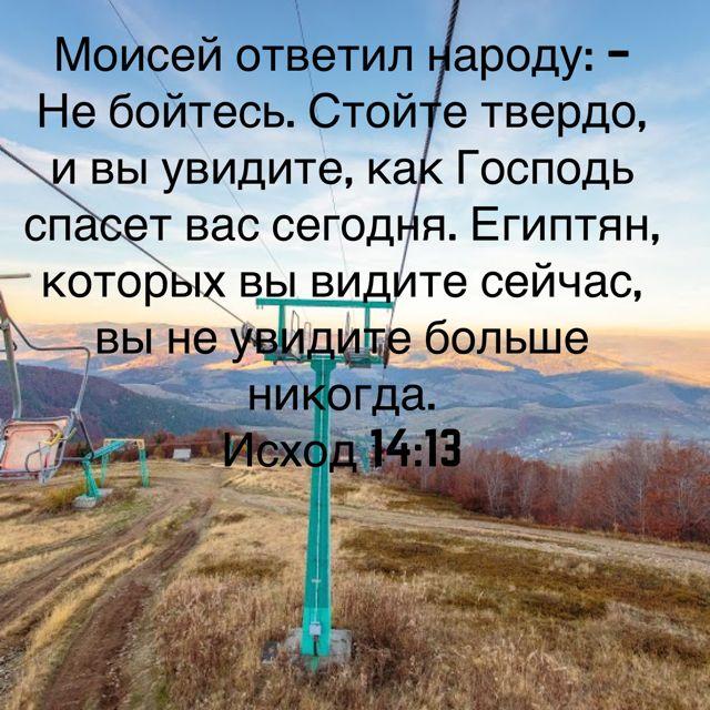 Моисей ответил народу: – Не бойтесь. Стойте твердо, и вы увидите, как Господь спасет вас сегодня. Египтян, которых вы видите сейчас, вы не увидите больше никогда. (Исход 14:13 RSZ)