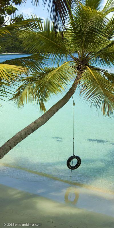 Rope Swing At Oppenheimer Beach Hawksnest Bay St John Usvi