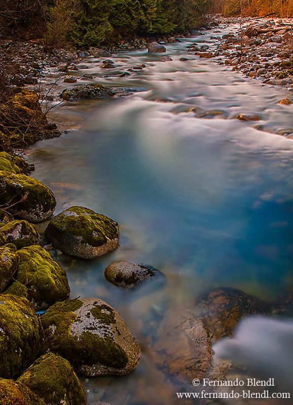 Photo: An early morning shot in Lynn Headwaters, this is a little different…