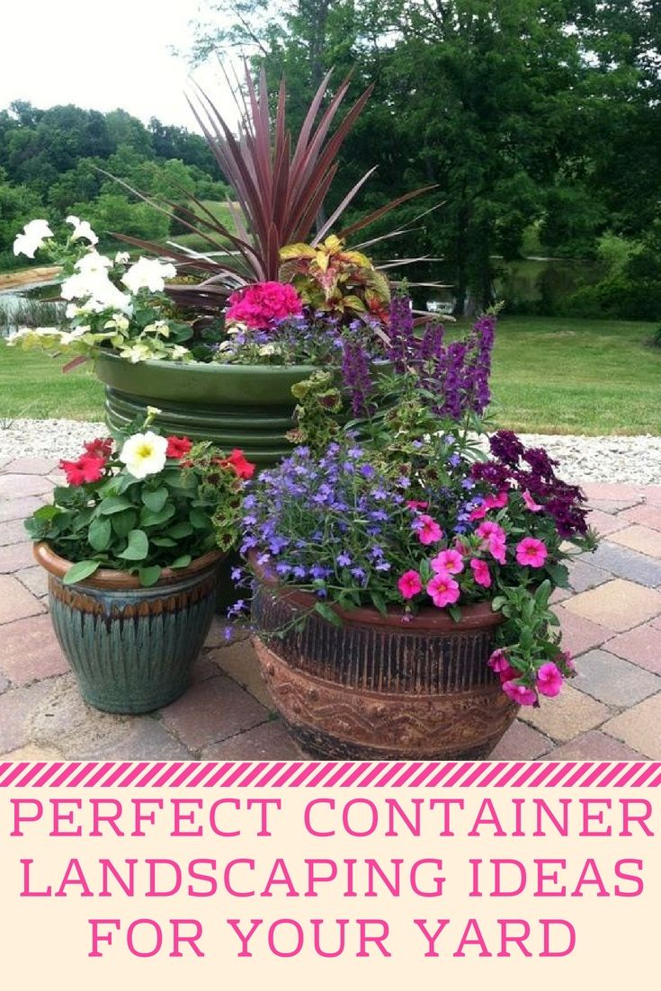 Container Landscape Tips For Your Yard Small Garden Landscape Design Container Gardening Container Garden Design