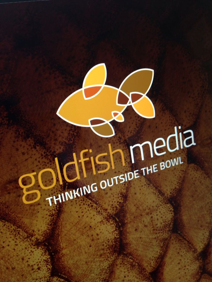 Brand logo for Goldfish Media a fantastic collaboration of creative professionals of which I am the designer. We also have Social Media PR, Event Management, Photography, Digital Media Development and Videography. #browncreative #goldfishmedia