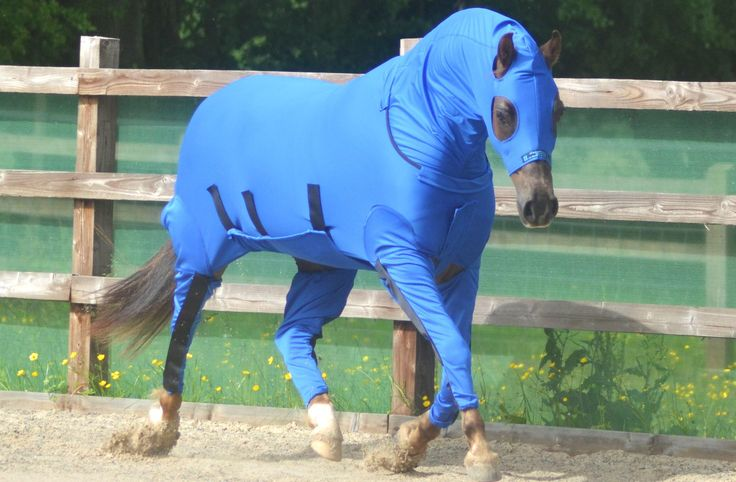 The Ultimate Horse Onesie for equine use | horse blankets ...