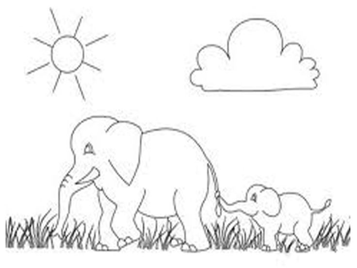 Elephants Coloring Pages Realistic Gajah Gambar