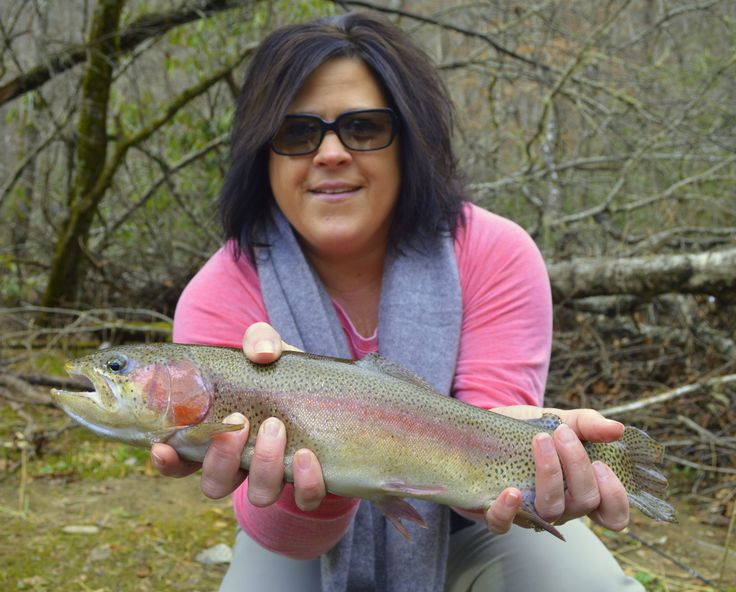 10 best fishing gsmnp images on pinterest national parks for Best trout fishing in nc
